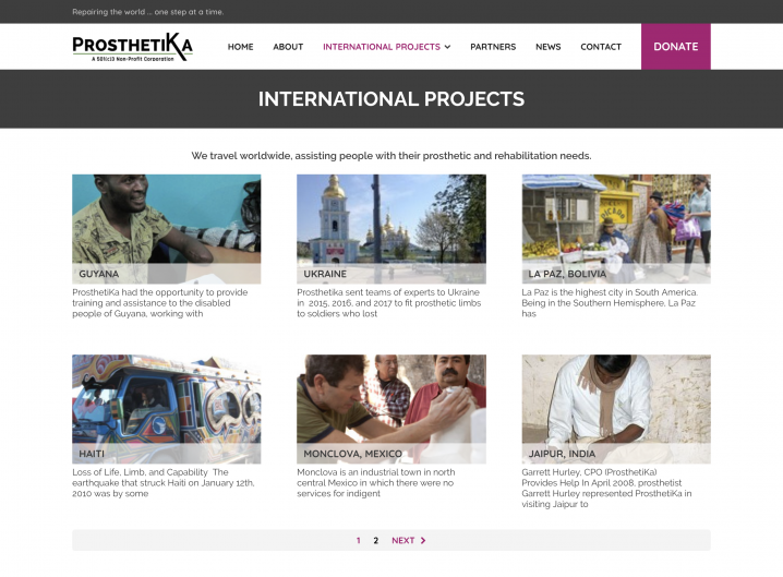 Prosthetika Project overview page